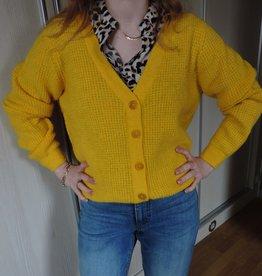 Lemoni knit