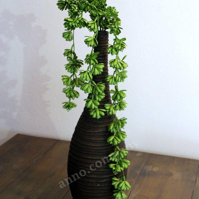 Sierplant en Kunstplant hop