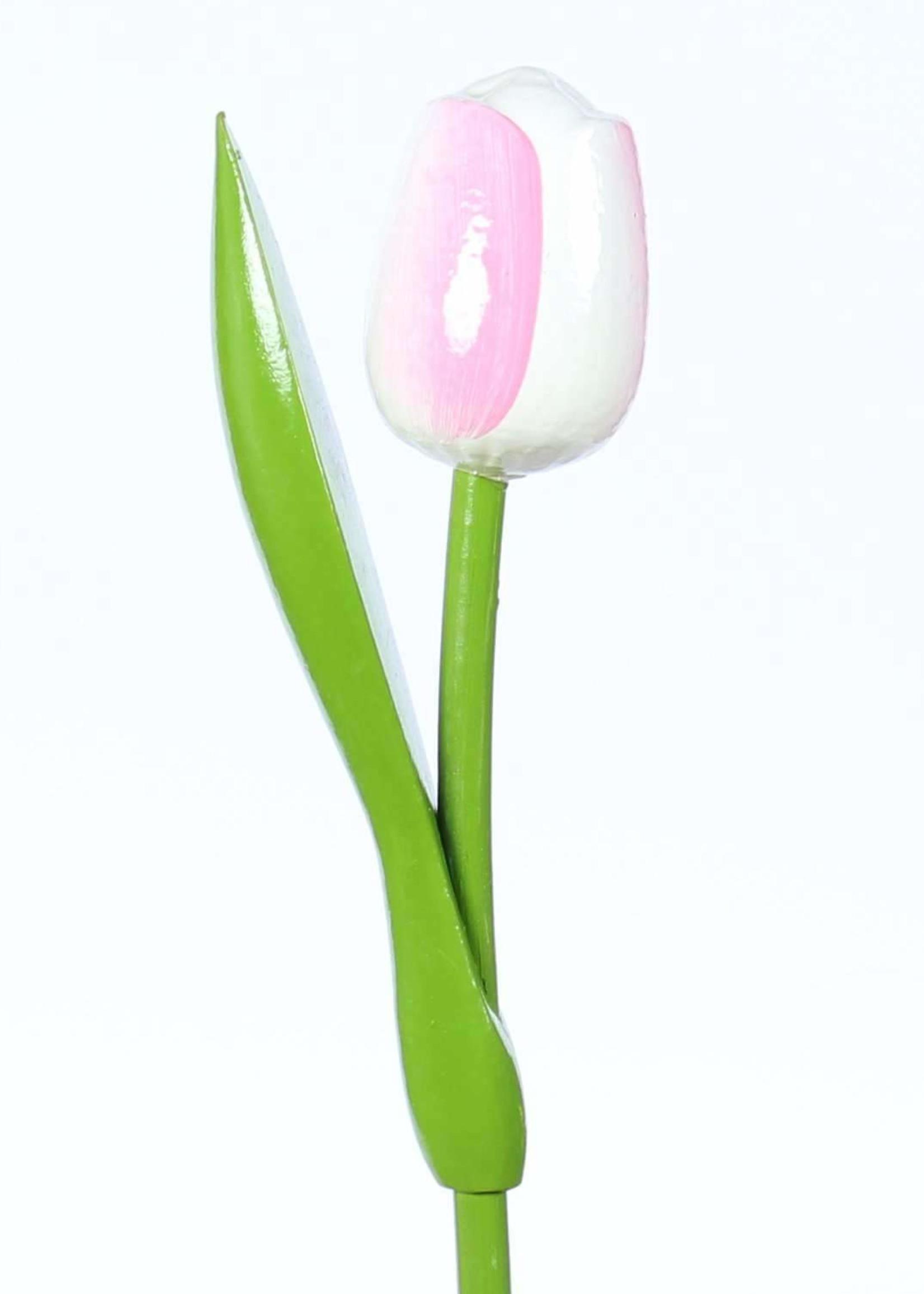 Houten Tulp, Wit Roze