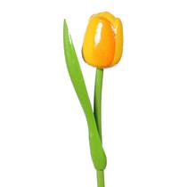 Houten Tulp, Geel Oranje