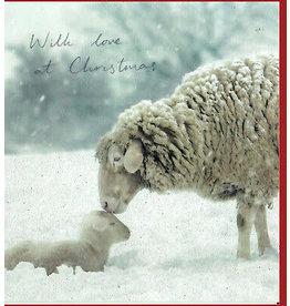 "Woodmansterne Set Wenskaarten ""Christmas Joy"" (5 stuks)"