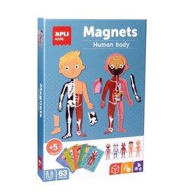 "APLI Magnets ""Menselijk Lichaam"""