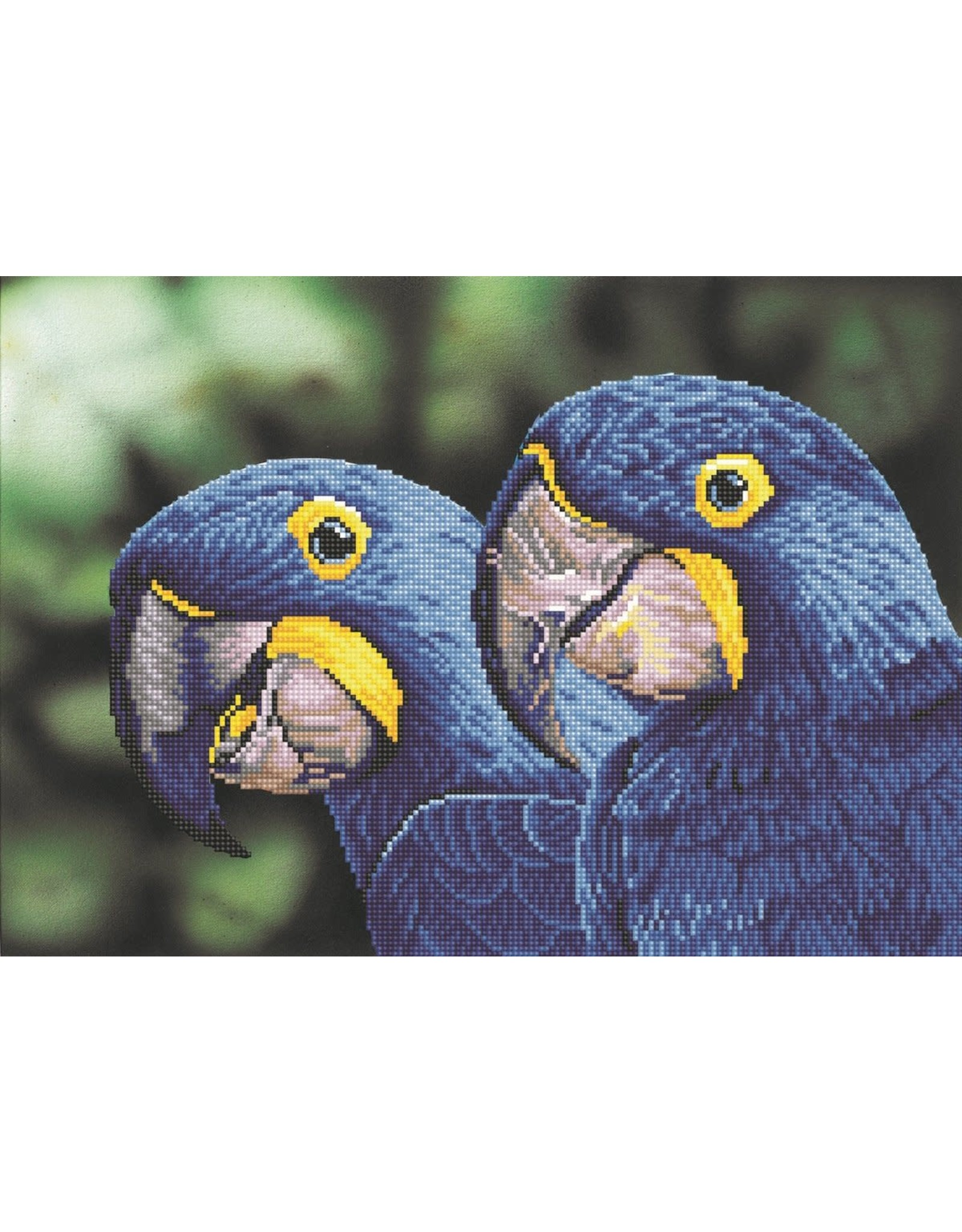 "Diamond Dotz Diamond Dotz ""Blue Hyacinth Macaws"""
