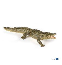Papo Alligator (50254)