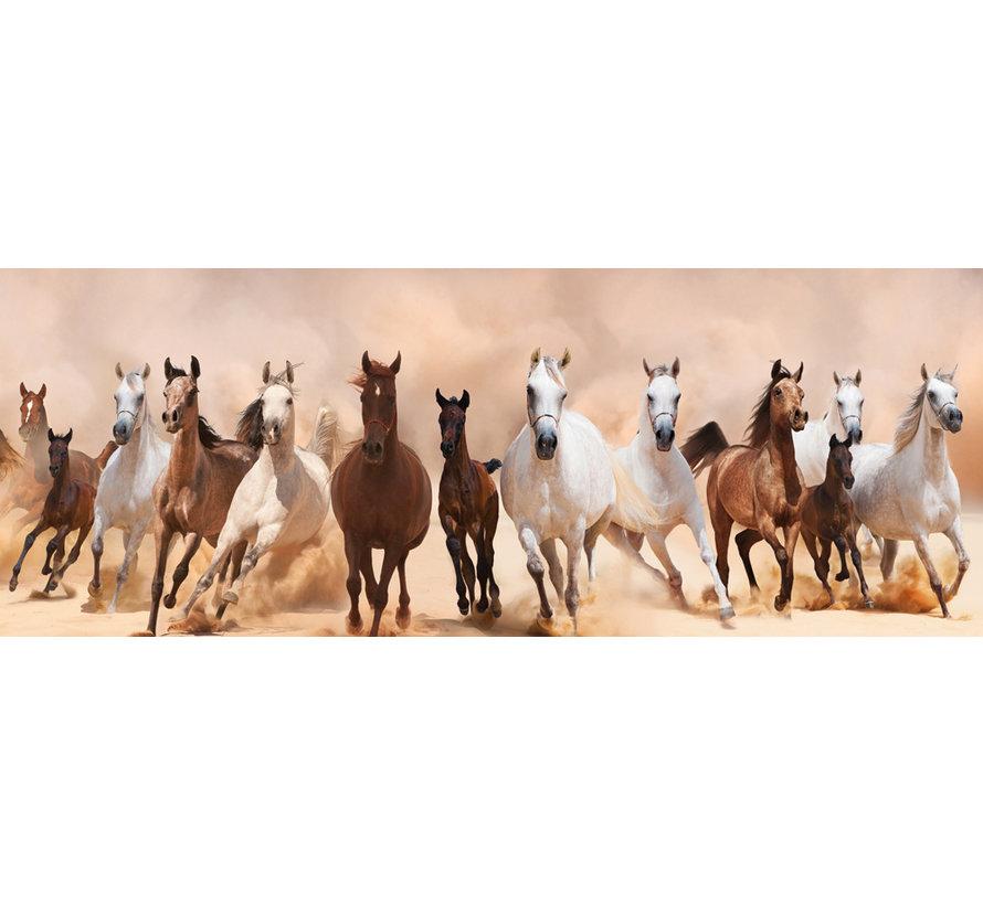 Plexiglas schilderij paarden