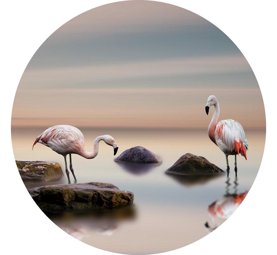 Plexiglas schilderij flamingo's
