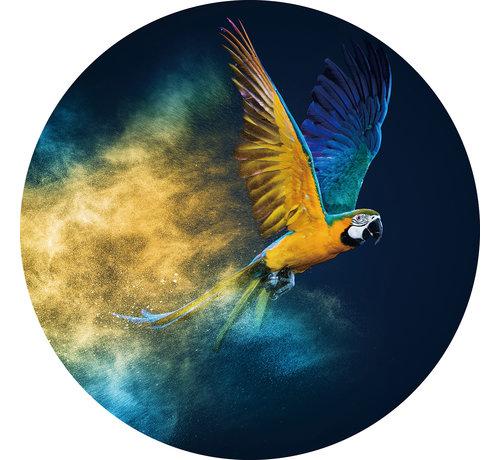 Plexiglas schilderij papegaai