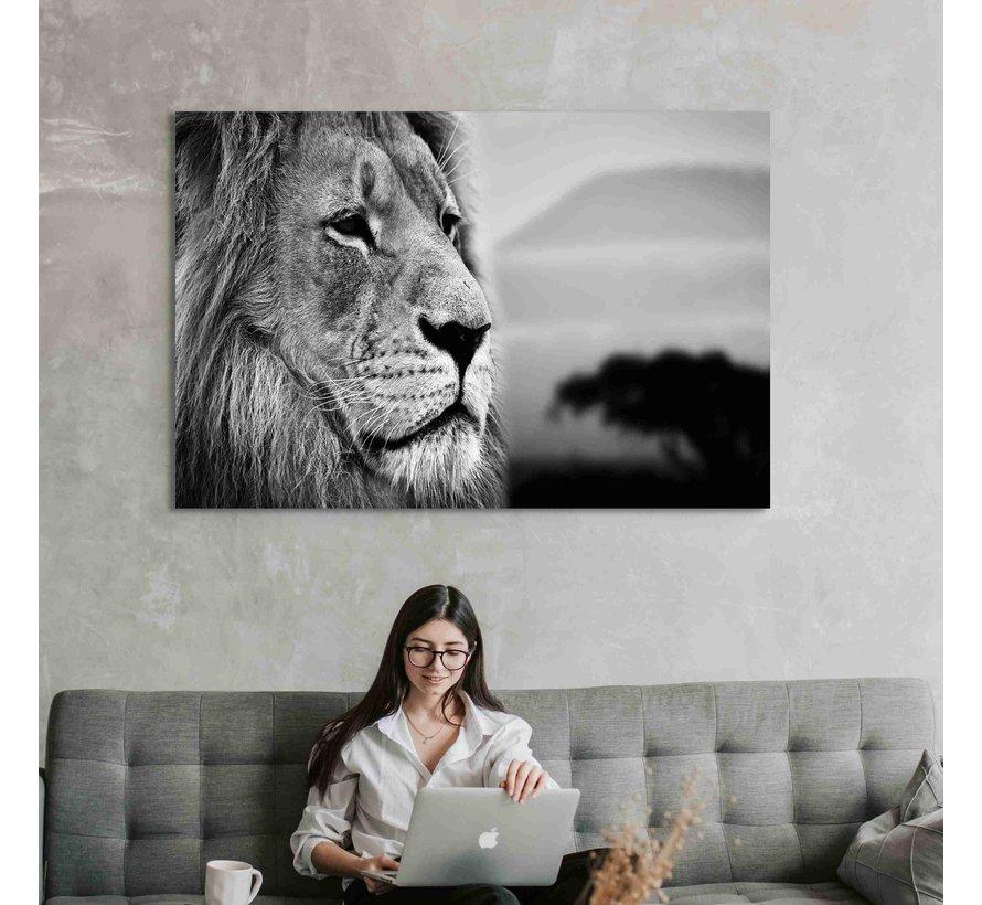 Plexiglas schilderij leeuw close up
