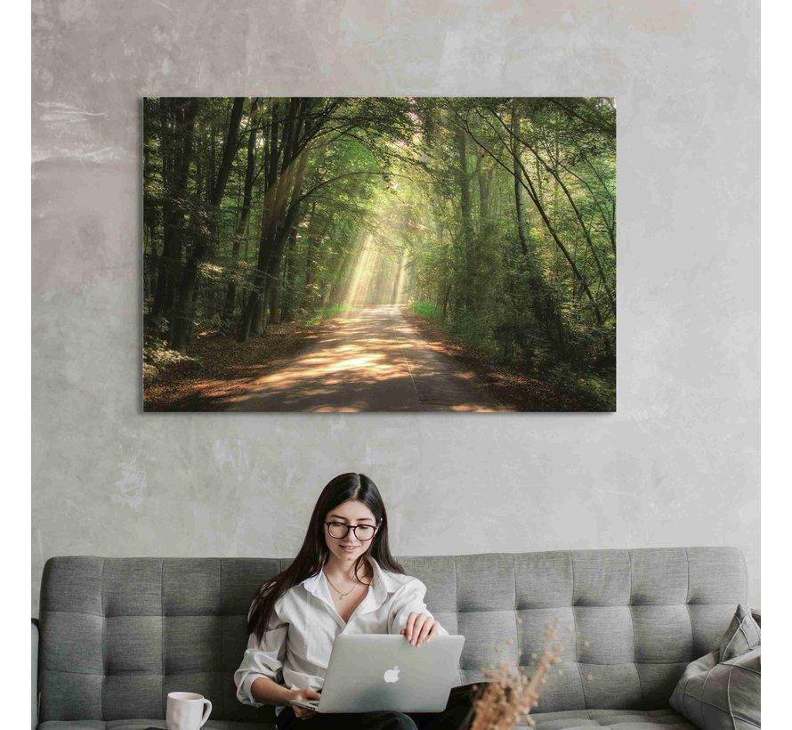 Plexiglas schilderij bos