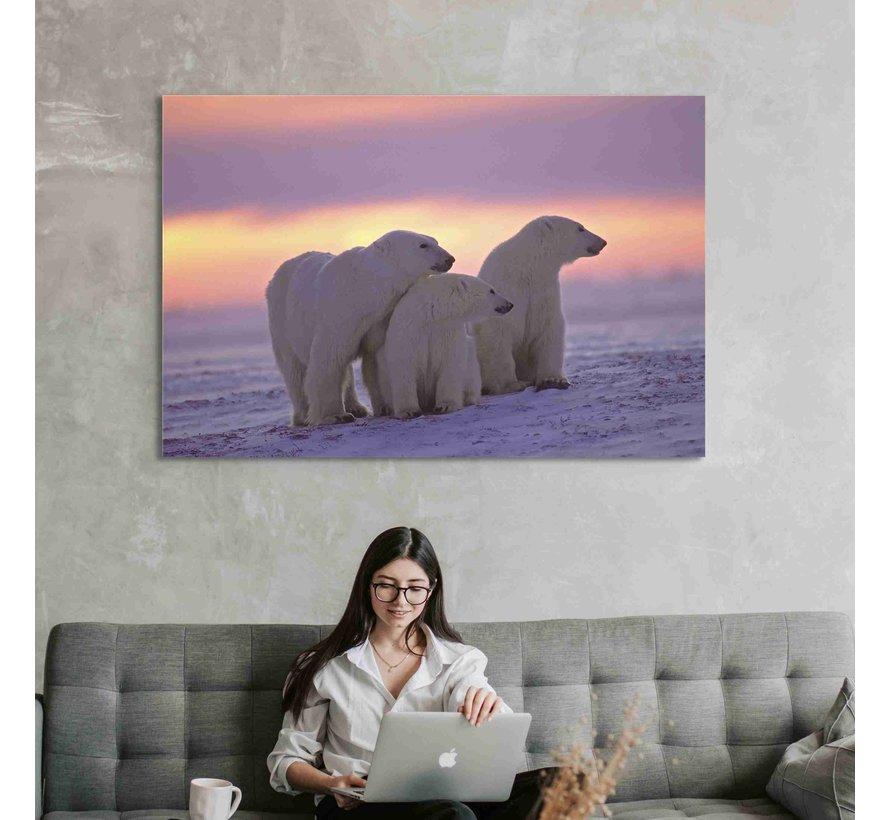Plexiglas schilderij ijsberen