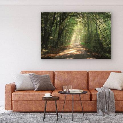 Prachtige plexiglas schilderijen voor meer kleur in huis