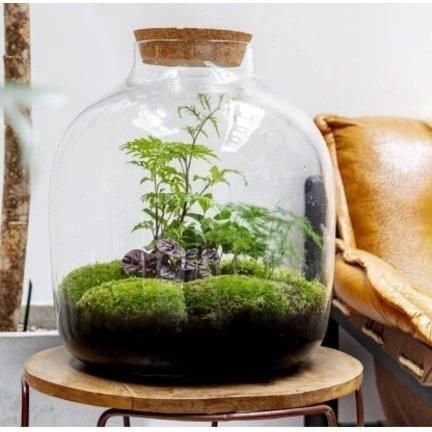 Growing Concepts voor groener wonen