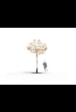 LEAF LAMP TREE
