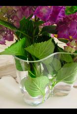 AALTO 花瓶禮物套裝