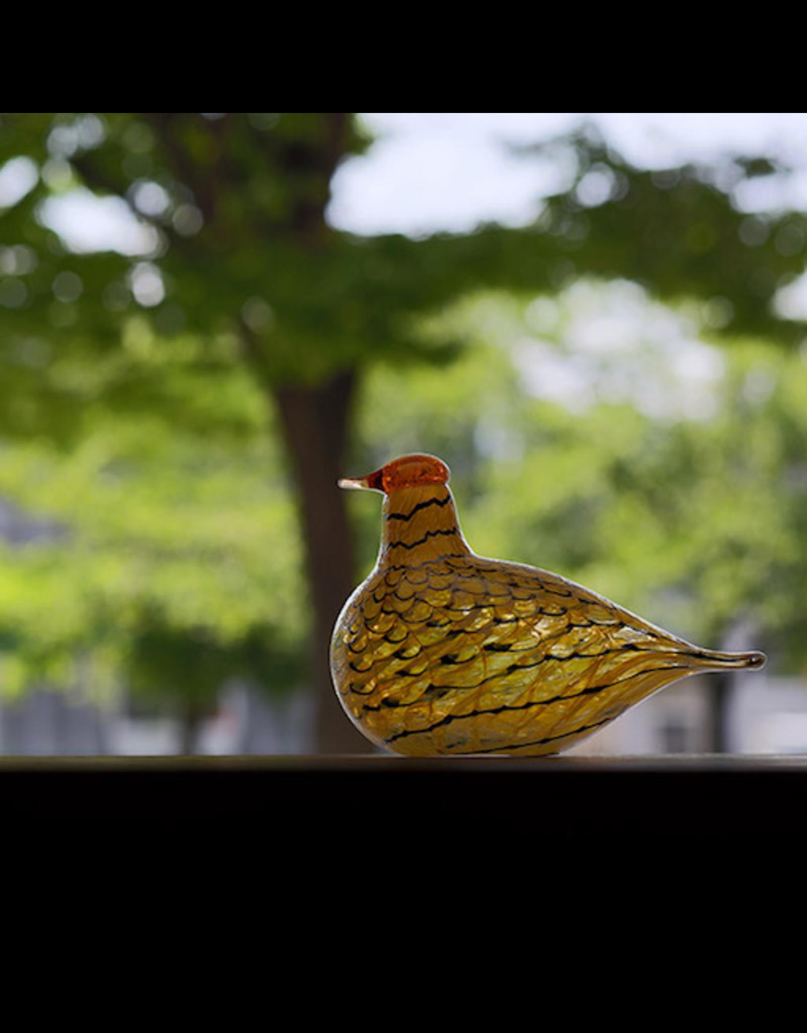 IITTALA BIRDS BY TOIKKA, SUMMER GROUSE