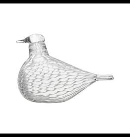 IITTALA MEDIATOR DOVE 透明玻璃鸽摆设