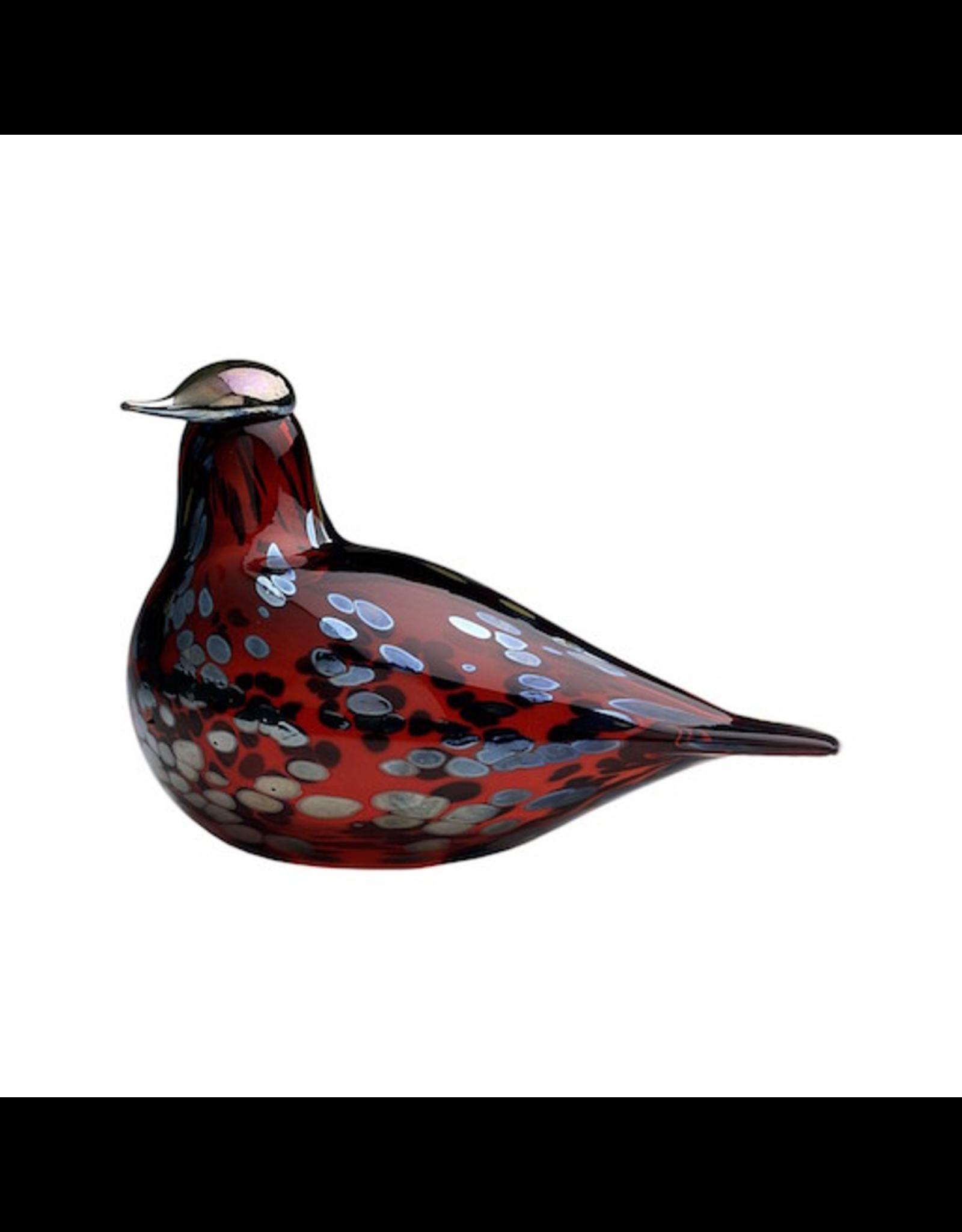 IITTALA RUBY BIRD CRANBERRY 蔓莓色红宝石鸟