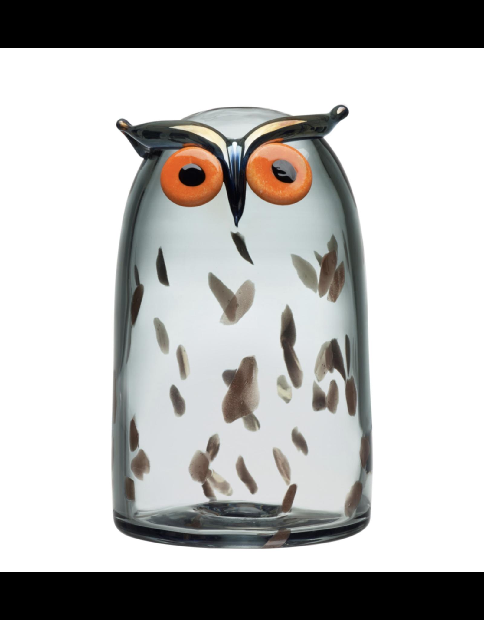 LONG-EARED OWL 长耳猫头鹰