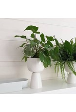 NAPPULA PLANT POTS