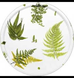 HJERTÉN & HJERTÉN 1001-65 COHIBA STENSÖTA 綠白色樺木托盤(大)