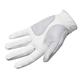 Footjoy Footjoy Weathersof  Fashion heren golf handschoen Links 2021  wit rood