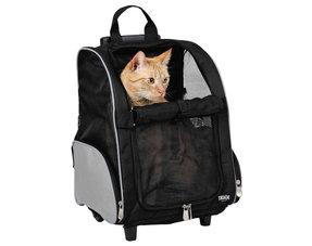 Kattenvervoer