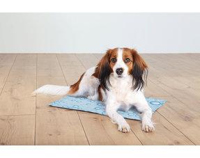 Koelproducten voor huisdieren