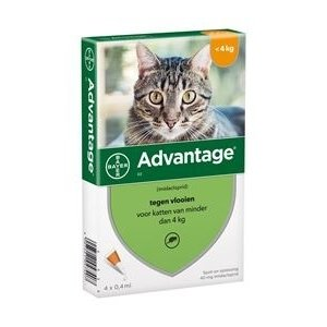 Bayer Advantage Vlooienmiddel - 40mg