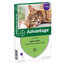 Advantage Vlooienmiddel - 80mg