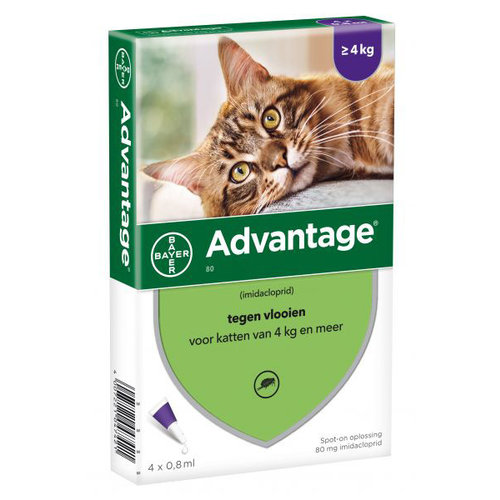 Bayer Advantage Vlooienmiddel - 80mg