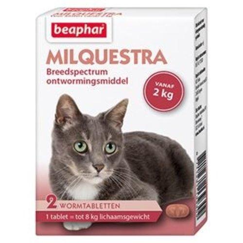 Ontwormingsmiddel kat