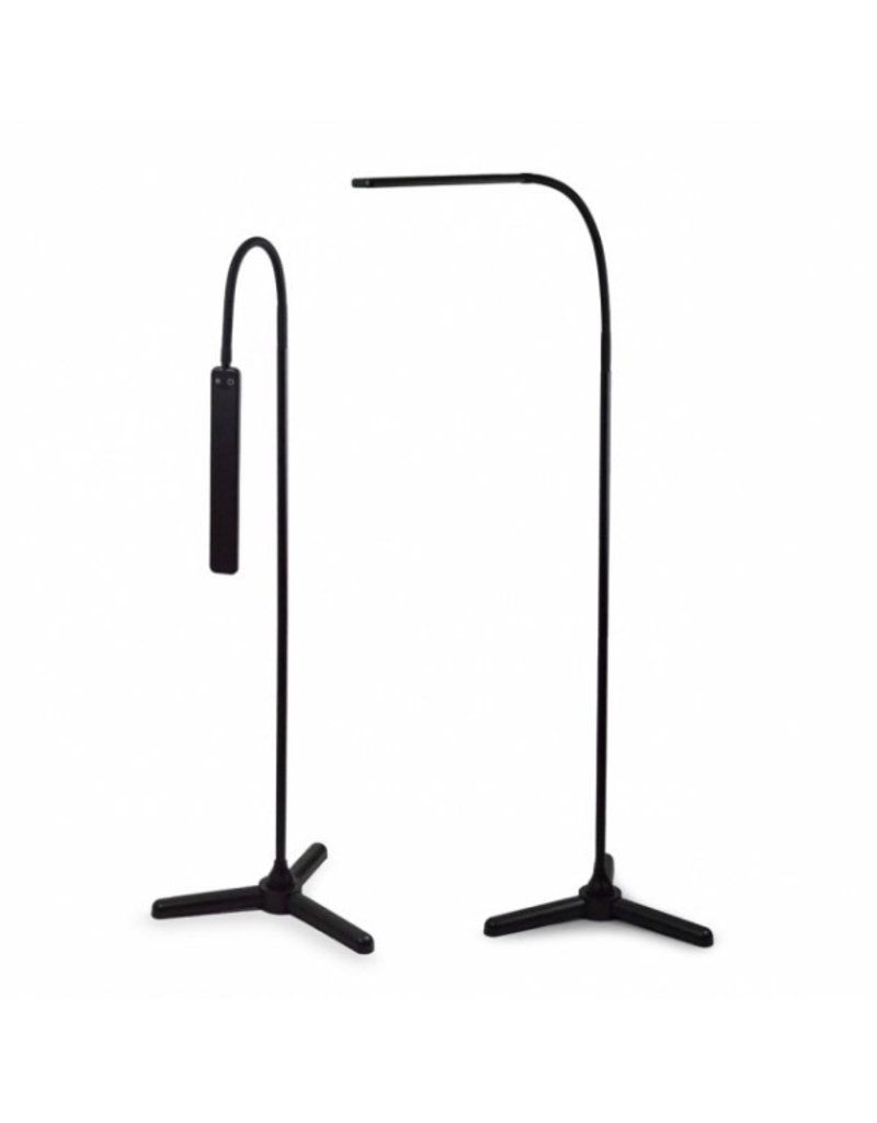 Slim LED Lamp  On a Stand