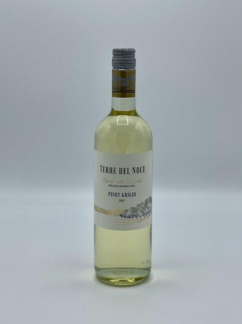 Terre del Noce - Pinot Grigio-1