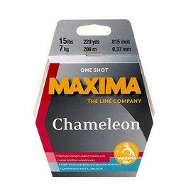 Maxima Maxima Chameleon