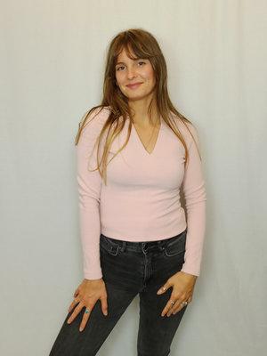 vanilia V-hals longsleeve T-shirt - roze