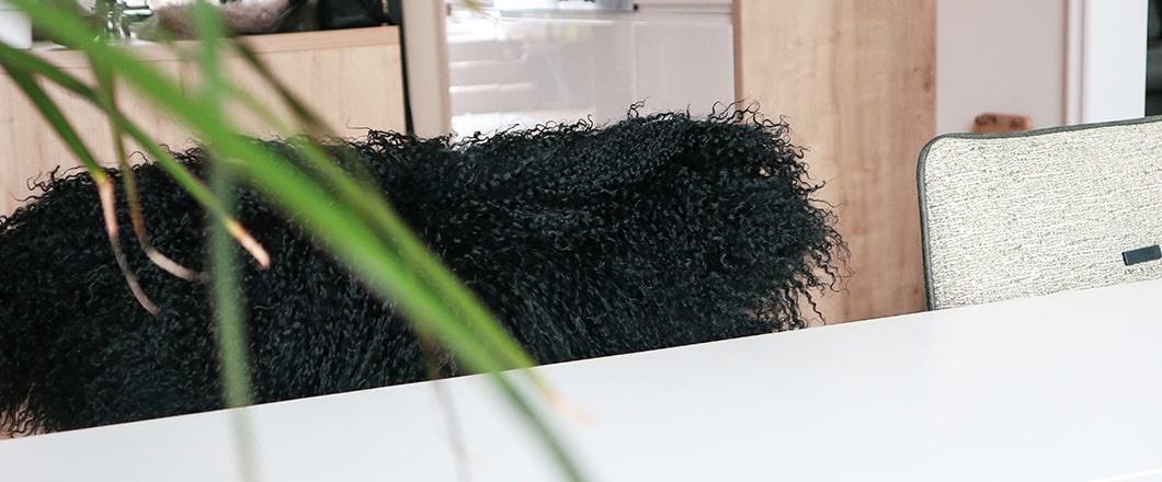 Schaffell schwarz kaufen