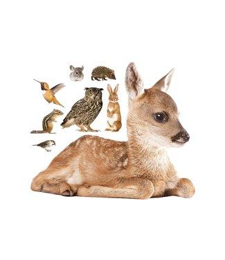 Muurstickers Forest Friends Hert XL & Friends