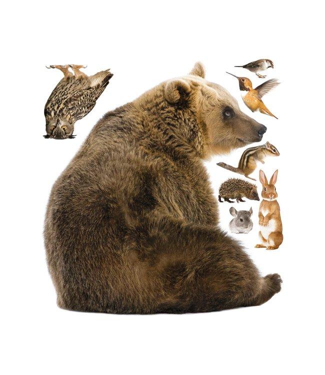 Muurstickers Forest Friends Bear XL & Friends