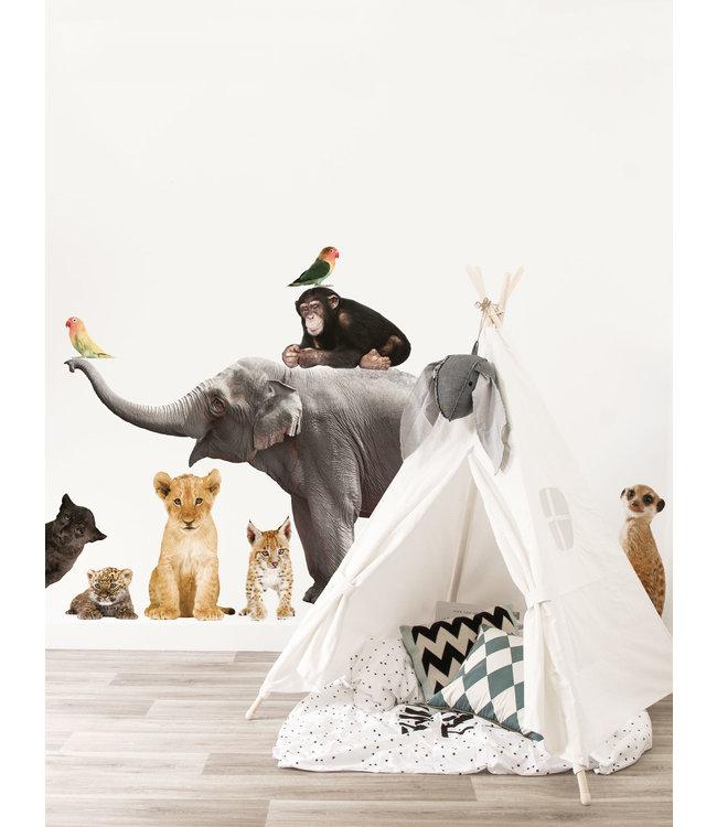 Muurstickers Safari Friends Elephant XL & Friends