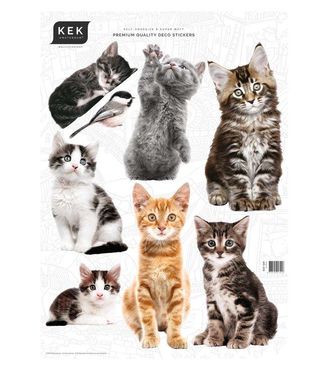 Set muurstickers Kittens, 42 x 59 cm