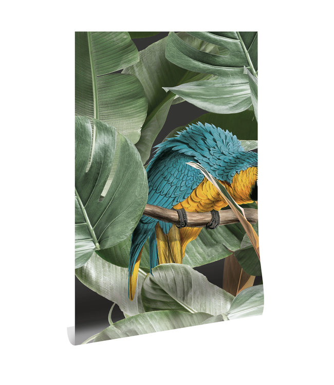 Wallpaper Botanical Birds, 97.4 x 280 cm