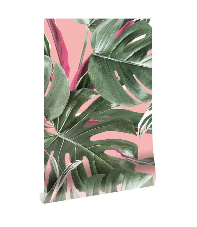 Botanical behang Monstera