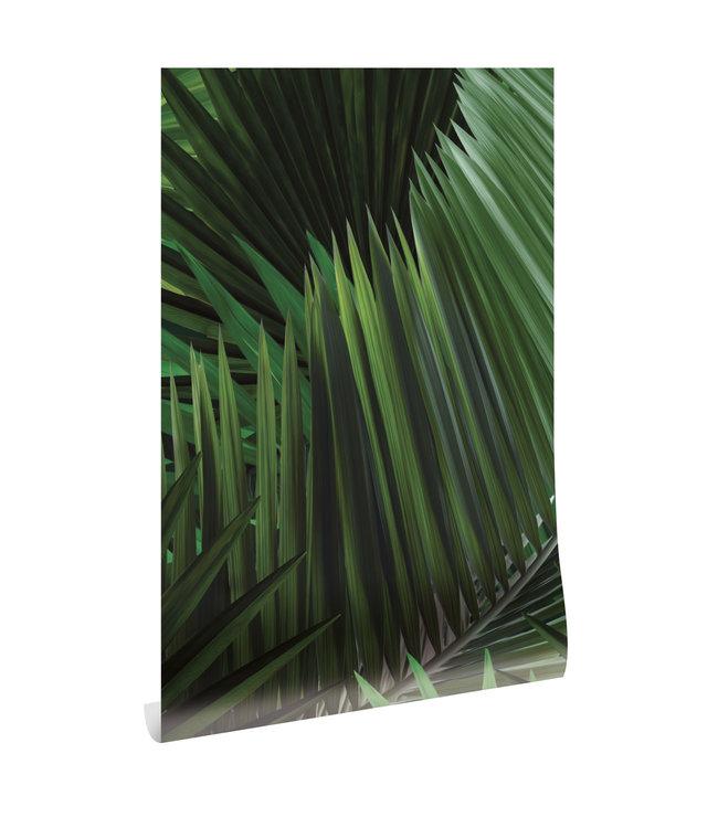 Botanical wallpaper Palm, 97.4 x 280 cm