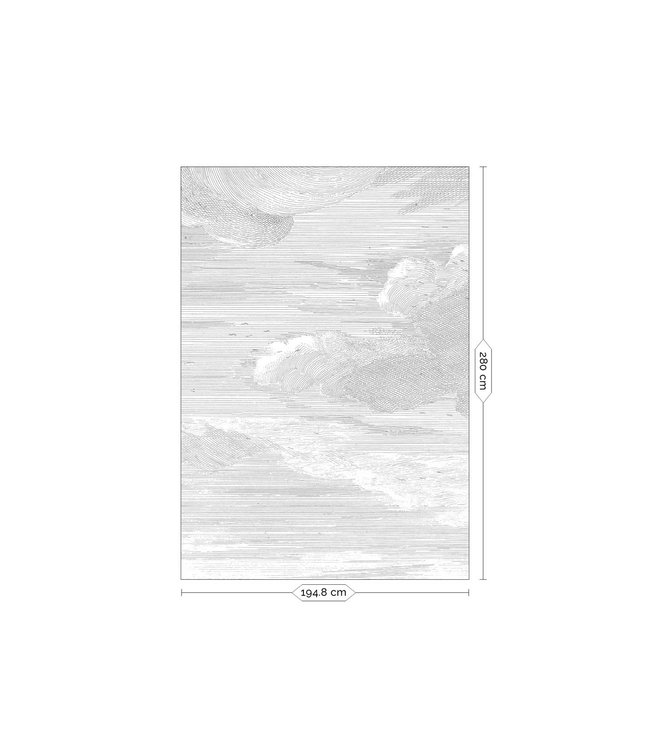 Wall Mural Engraved Clouds
