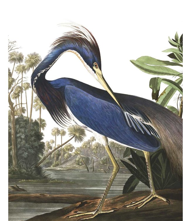 Wallpaper Panel Louisiana Heron, 142.5 x 180 cm