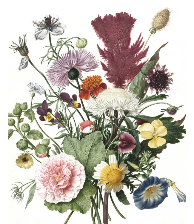 Wallpaper Panel Wild Flowers, 142.5 x 180 cm