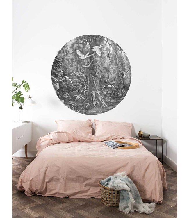Wallpaper Circle Tropical Landscapes