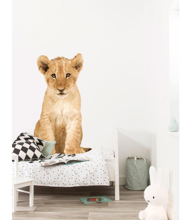 Wall sticker Lion Cub XL, 70 x 115 cm