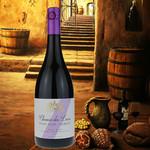 Chemin des Lions Chemin des Lions Pinot Noir-Merlot