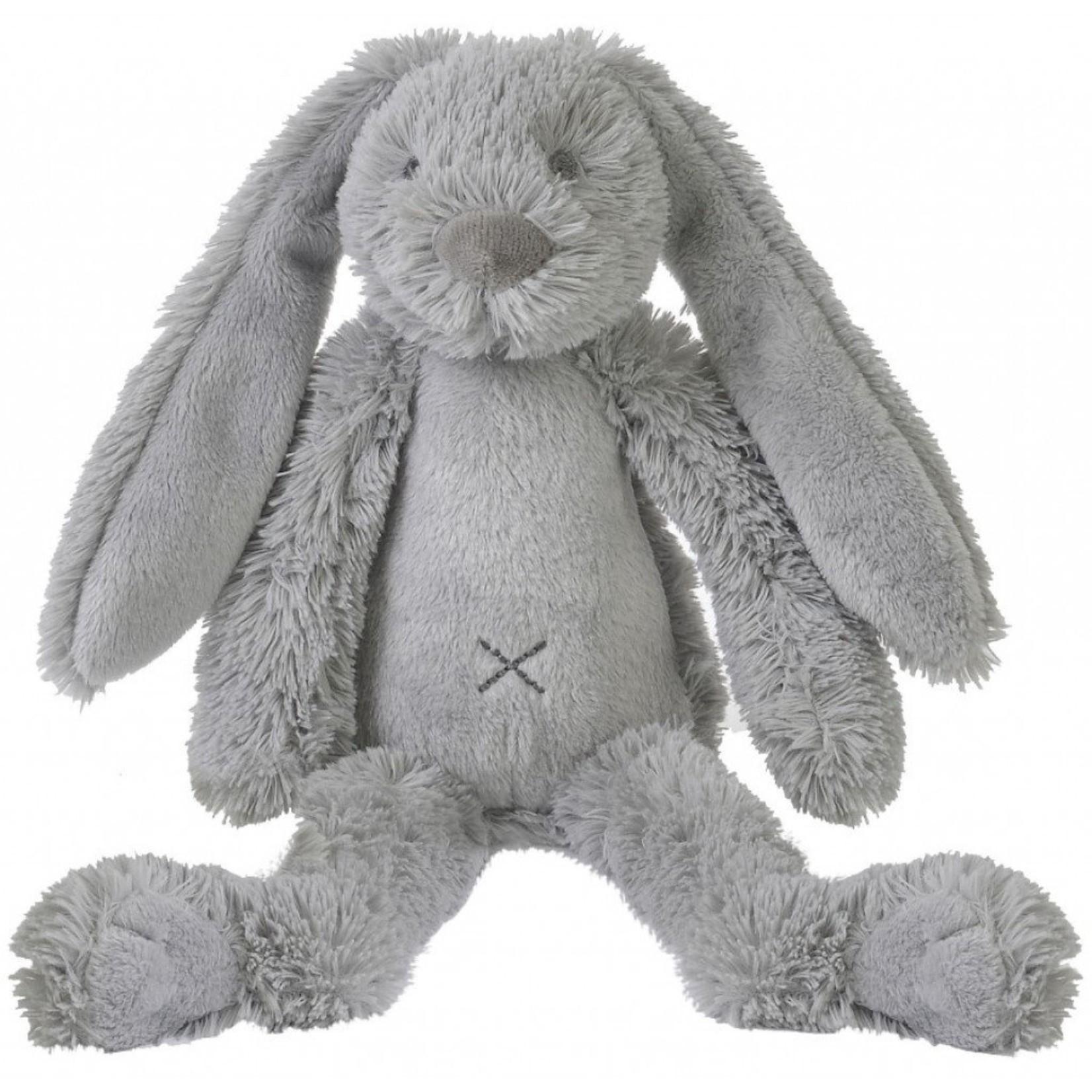 Grey rabbit Richie